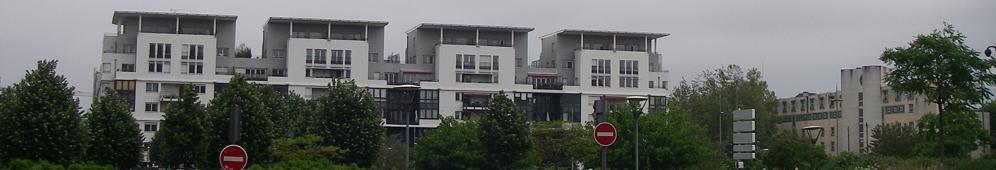 Comité d'Intérêt Local Gerland Guillotière